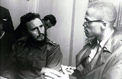fidel_castro_and_malcolm_x